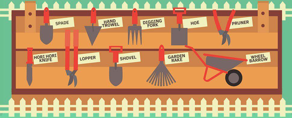 Gardening And Landscaping Beginner S Guide