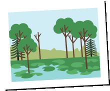 tree senry