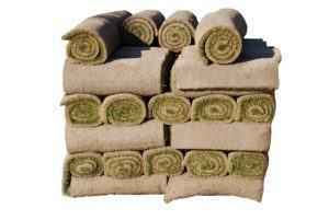 rolls-of-sod